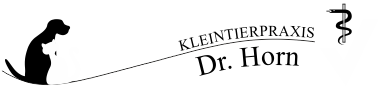Tierarzt Saalfeld - Kleintierpraxis Dr. Anke Horn